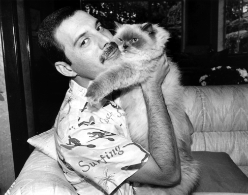 artist-with-his-cat