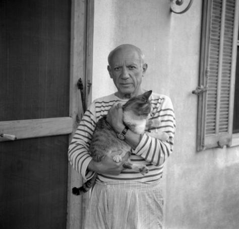 Picasso z kotem