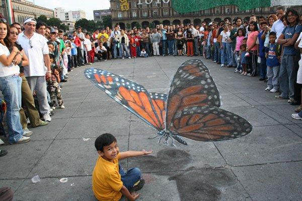 phoca_thumb_l_butterfly-i