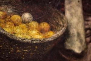 17. detal cytryny