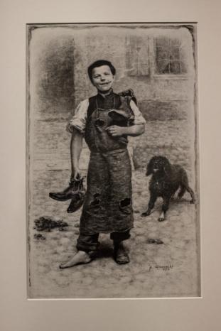 Szewczyk warszawski -tusz - 1884