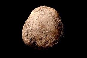 Zdjęcie ziemniaka za 1,56 mln$